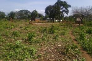 Fulani School in the distance