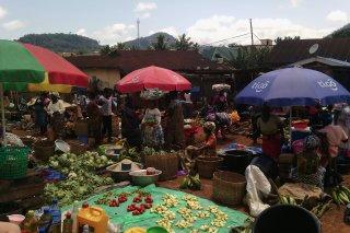Mpraeso Market